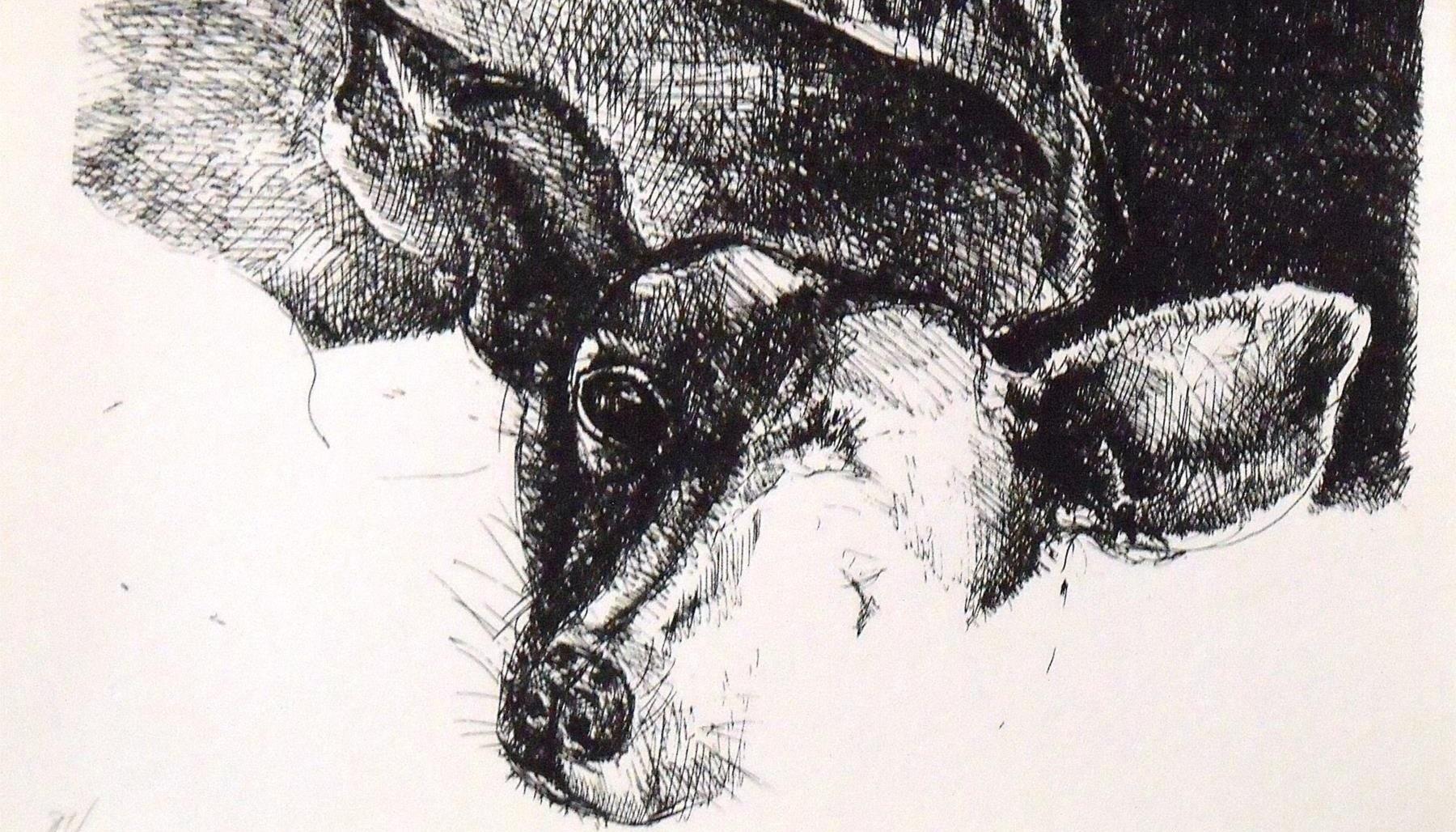 Animaladas pictóricas: las mascotas del arte